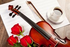 Red roses and a violin Stock Image