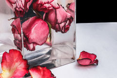Red roses in water on black background. Red roses in water in a glass vase on a black background Royalty Free Stock Images