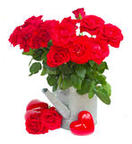 Red roses in watering can with hearts Royalty Free Stock Photo