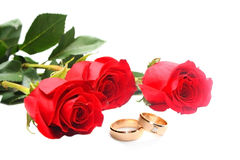 Red roses and wedding rings. Isolated on white Royalty Free Stock Images