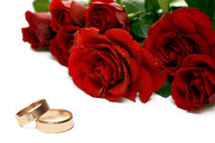 Red roses and wedding rings. Isolated on white Stock Photos