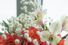 Red roses and white Alstroemeria Stock Photos