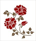 Red roses on the white background Stock Photos