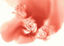 Red roses white background watercolor Royalty Free Stock Photo