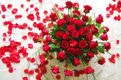 Red roses_1. Red roses on a white background for weddings and celebrations Royalty Free Stock Photo