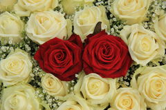Red roses in a white bouquet. Red roses in a white rose bouquet Stock Images