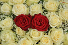 Red roses in a white bouquet. Red roses in a white rose bouquet Royalty Free Stock Photography