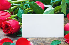 Red roses and white card with a place for a congratulatory text Stock Images