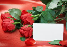 Red roses and white card with a place for a congratulatory text Royalty Free Stock Photo