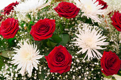Red roses and white chrysanthemums. A bunch of red roses and white chrysanthemums royalty free stock photo