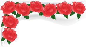 Red roses on white fabric. Stock Images