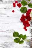 Red roses on white wooden background Stock Photos