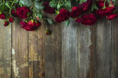 Red roses on wooden background. copy space stock photos