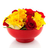 Red roses in yellow egg cups Stock Photo