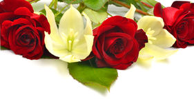 Red roses and yellow flowers isolated on white background Stock Photography