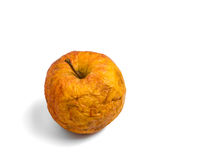 Red rotten apple Royalty Free Stock Image