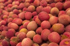 Red Round Fruit Royalty Free Stock Images