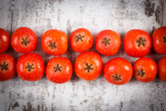 Red rowan on old wooden background Royalty Free Stock Photo