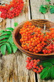 Red rowan. In a wooden bowl on the old wooden background. autumn theme Stock Images