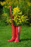 Red rubber boots Royalty Free Stock Photos