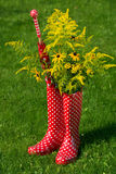 Red rubber boots Royalty Free Stock Image