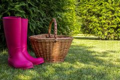 Red rubber boots and wicker basket stand on green glade in sunny summer forest. Royalty Free Stock Photo