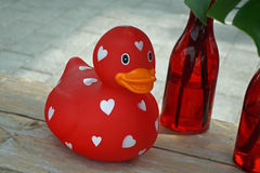 Red Rubber Duck with White Hearts Royalty Free Stock Images