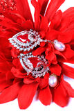 Red ruby ear-rings Royalty Free Stock Photos