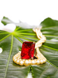 Red ruby ring and pearls. Nature jewelry - ruby ring and pearls on green leaf. Isolated on white background. This image is exclusive to DT Royalty Free Stock Photo