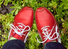 Red running shoes on a grass Stock Image