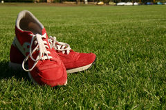 Red running shoes on a sports field. Red running shoes on a green sports field Royalty Free Stock Photo