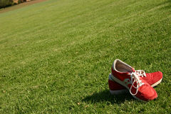 Red running shoes on a sports field. Red running shoes on a green sports field Royalty Free Stock Image