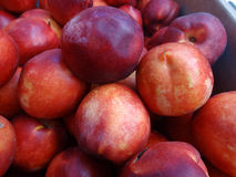 Red Ryan Yellow Nectarine Stock Photos