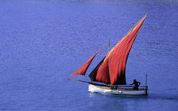 Red sail. A white boat with red sail against a blue sea Stock Images