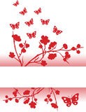 Red sakura and butterfly background Stock Photo