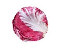 Red salad radicchio organic vegetable isolated on white. Background Royalty Free Stock Photography