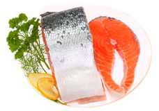 Red salmon. With green fennel, parsley and lemon slices Stock Photography