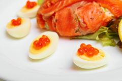 Red salmon and caviar Stock Images