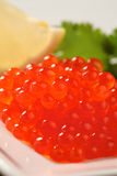 Red salmon caviar Stock Images