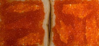 Red salmon caviar on bread with butter. Omega 3. Red salmon caviar on bread toast. Sandwich. Omega 3 Stock Photos