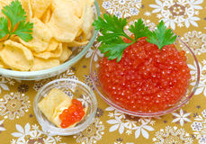 Red salmon caviar and potato chips. Royalty Free Stock Image