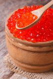 Red salmon caviar in a wooden spoon Royalty Free Stock Photo