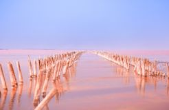 Red salt lake waters in the summer stock photography