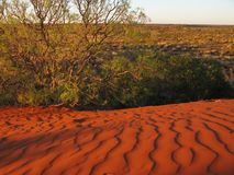 Red sand. Dunes in the outback Australia Royalty Free Stock Photo