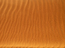 Red sand desert Royalty Free Stock Image