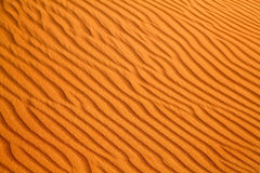 Red sand desert Royalty Free Stock Photos