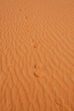 Red sand desert Stock Photo