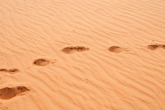 Red sand desert Stock Image