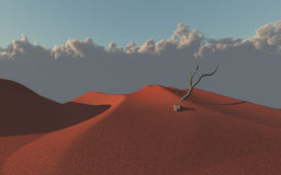 Red sand desert dunes. With branch Royalty Free Stock Image
