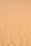 Red sand dune desert in Mui Ne Stock Image